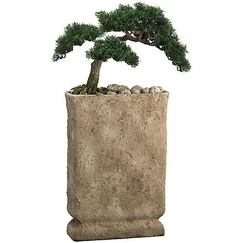 "32"" Cedar Bonsai Tree, Faux"