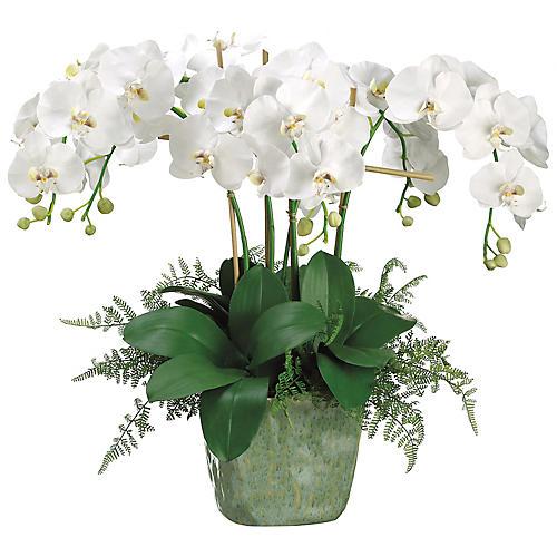 """28"""" Phalaenopsis Orchid Arrangement, Faux"""