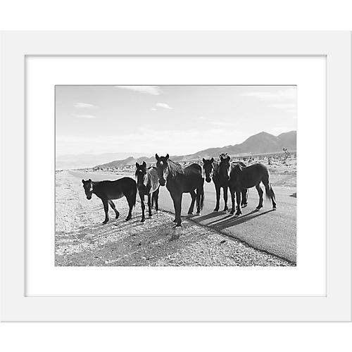 Kevin Russ, Desert Road Horses