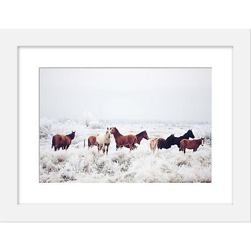 Kevin Russ, Winter Horseland