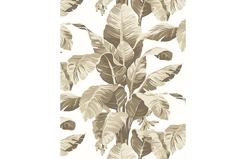 Pacifico Palm Wallpaper, Cappuccino