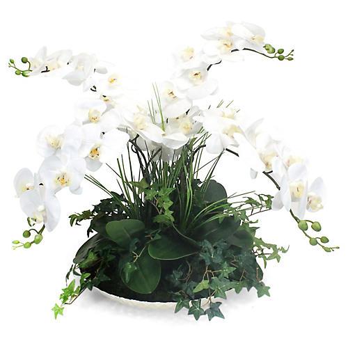 "24"" White Orchid w/ Bowl, Faux"