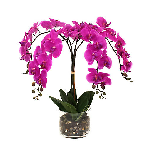 """26"""" Fuchsia Orchid w/ Cylindrical Vase, Faux"""