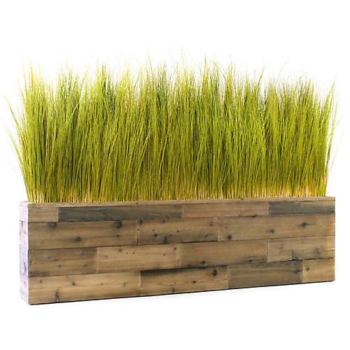 "62"" Spiral Grass w/ Reclaimed Planter, Preserved"