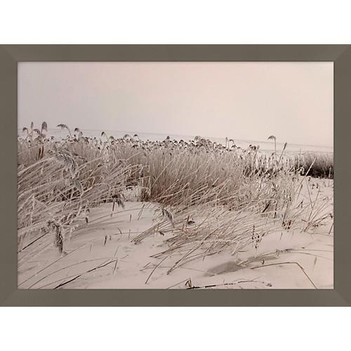 Sepia Sand Dune II