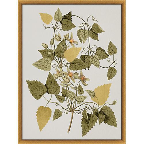 Gilded Botanicals I