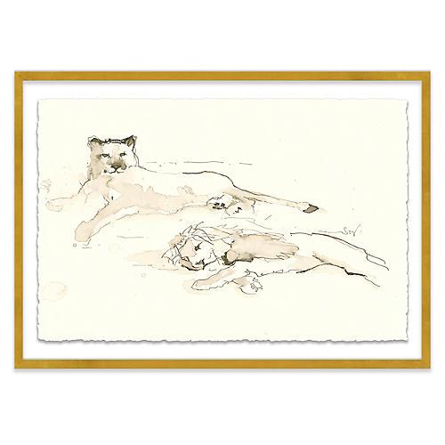 Mary H. Case, Catnap
