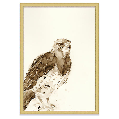 Mary H. Case, Hawk I