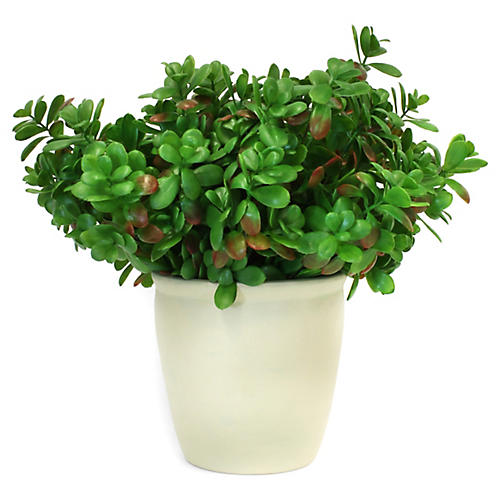 """18"""" Jade Plant w/ Vessel, Faux"""