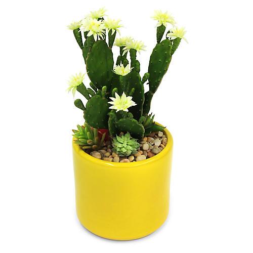 "14"" Blossom Cactus w/ Yellow Vessel, Faux"
