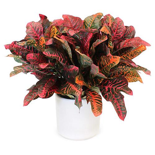 "22"" Red Croton Plant w/ Vase, Faux"
