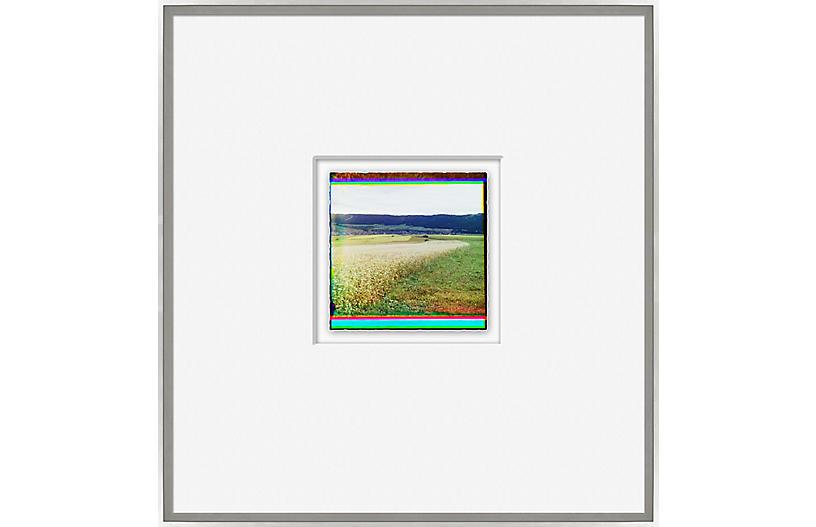 Solarized Color Photo III