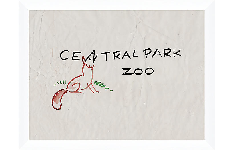 Central Park Zoo Fox
