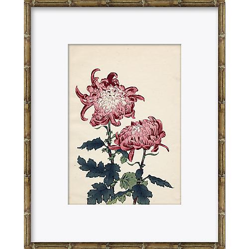 Asian Flower 2