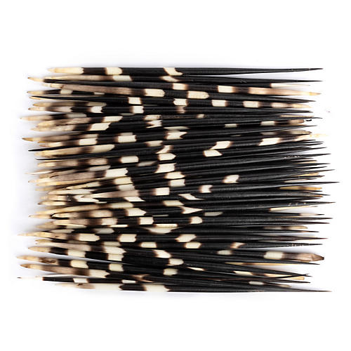 Asst. of 50 Porcupine Quills, Black/Natural