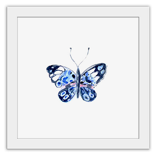 Cathy Graham, Blue Butterfly