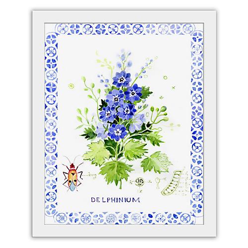 Cathy Graham, Delphinium