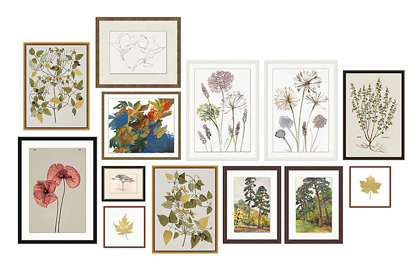 13-Pc Botanical Gallery Wall