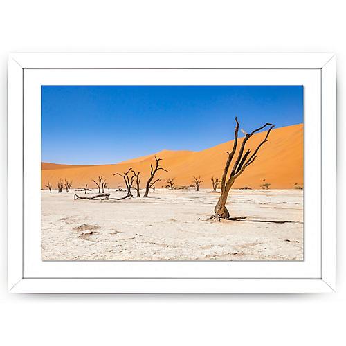 Richard Silver, Dead Trees, Namibia