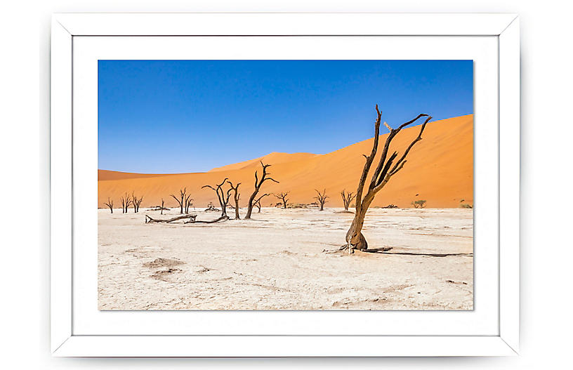 Richard Silver, Dead Trees, Namibia