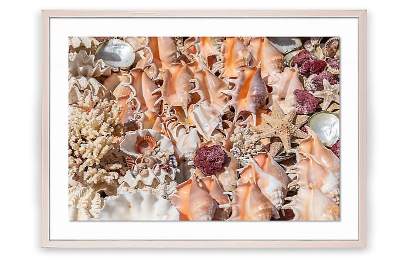 Richard Silver, Egyptian Shells II