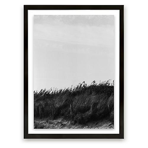 Glen Allsop, Dune Grass