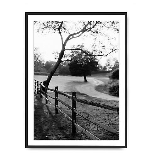 Glen Allsop, Around The Tree