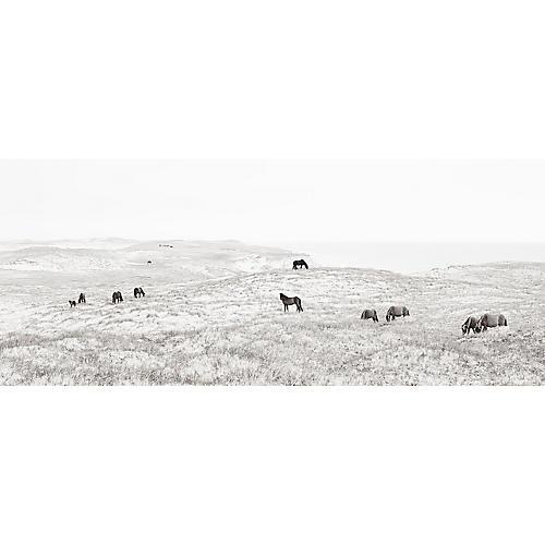 Drew Doggett, Wild Frontier