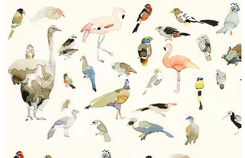 Mary H. Case Med. Bird Chart Wallpaper, Multi