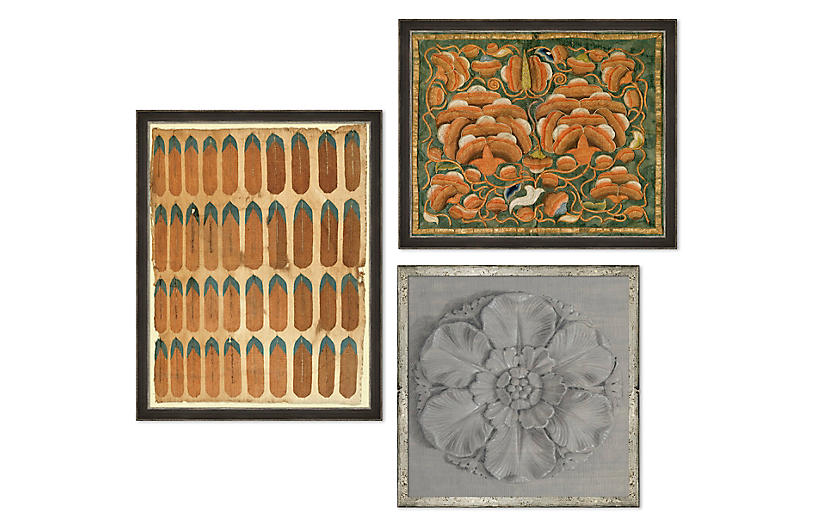 The Naturalist, Gallery Set of 3