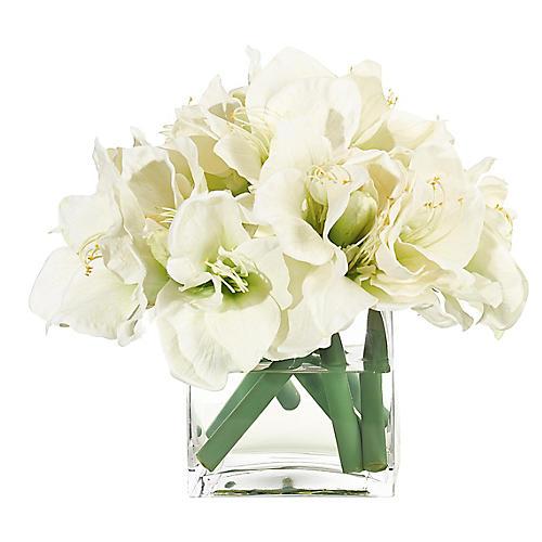 """14"""" Amaryllis in Cube Vase, Faux"""