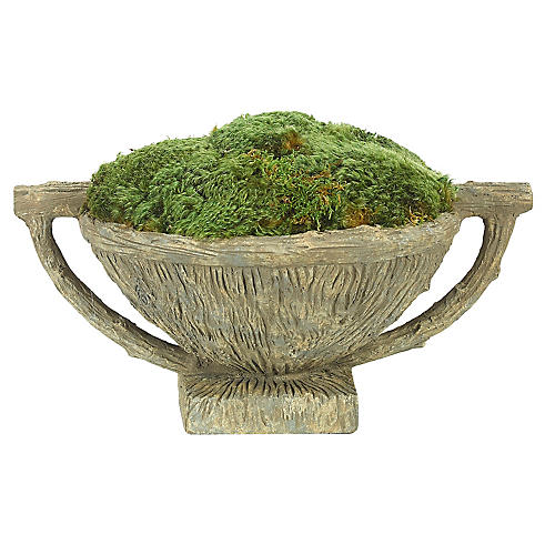 "16"" Moss Mound in Faux Bois Bowl, Preserved"