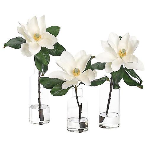 S/3 Magnolia in Bottles, Faux