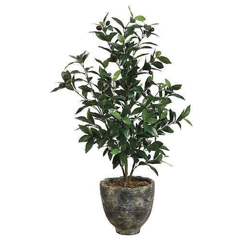 3' Olive Tree in Planter, Faux