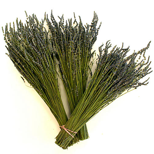 "19"" Lavender Bunches, Dried"