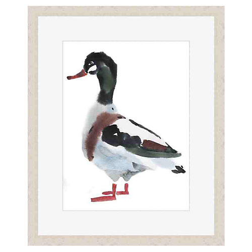 Mallard Watercolor