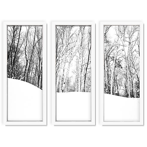 Pascal Shirley, Winter Forest II Triptych