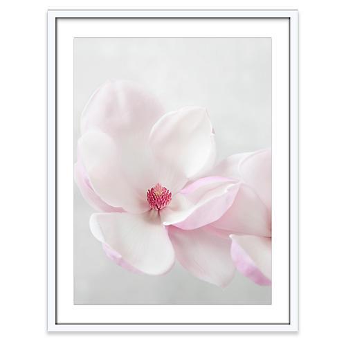Amy Neunsinger, Chinese Magnolia
