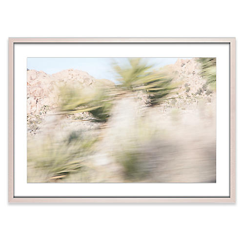 Amy Neunsinger, Joshua Tree 1