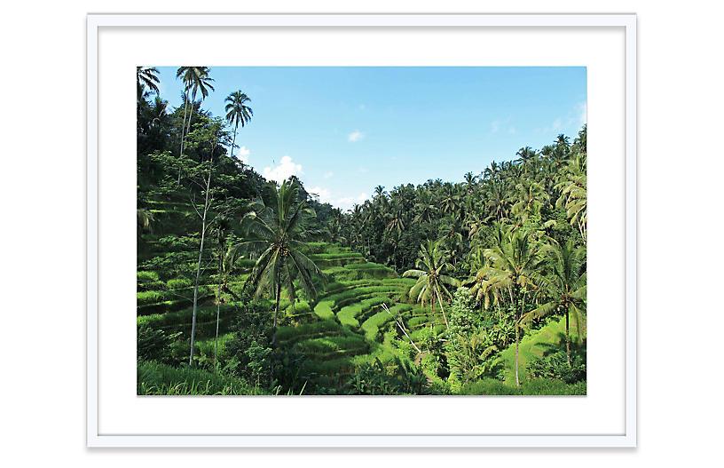 Natalie Obradovich, Tegallalang Bali