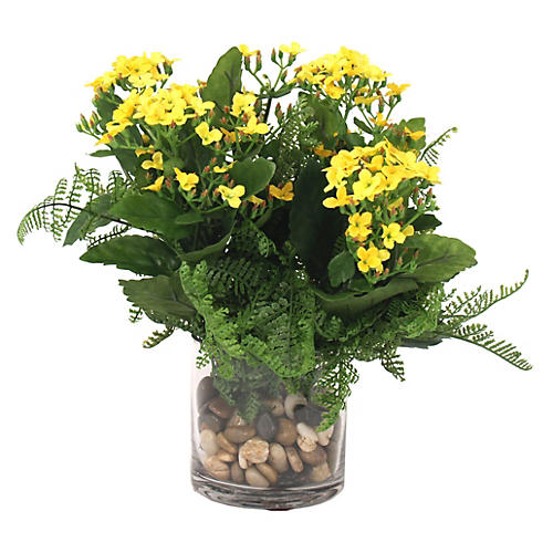 """22"""" Kalanchoes in Vase, Faux"""