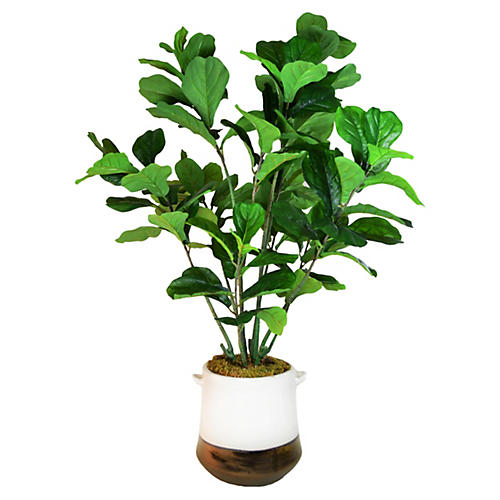 "54"" Fiddle-Leaf Tree in Planter, Faux"