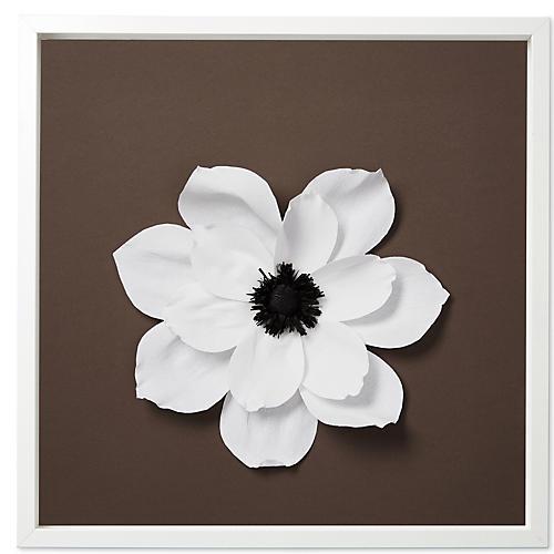 Dawn Wolfe, Magnolia Blossom