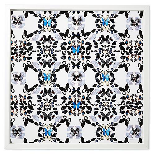 Dawn Wolfe, Seaside Patterns