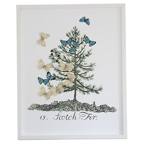 Dawn Wolfe, Tree w/Butterfly Cutouts: Scotch Fir
