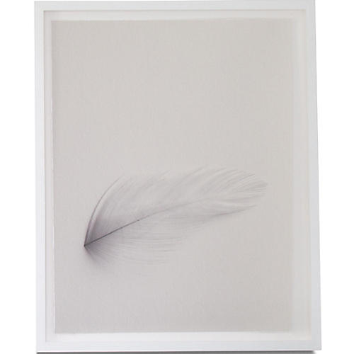 Dawn Wolfe, Down Feather
