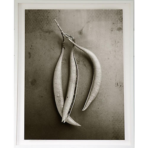 Dawn Wolfe, Pods on Steel