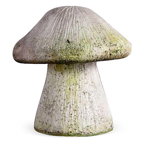 """10"""" Wild Mushroom, White Moss"""