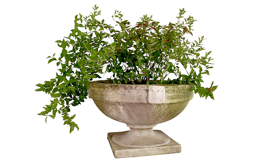 Smooth Strap Urn, White Moss