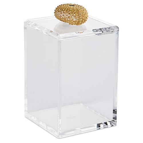Tall Acrylic Lid w/ Gold Urchin Lid